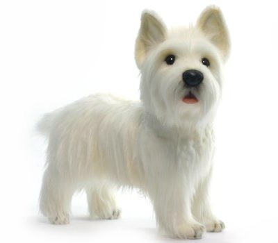 West Highland Terrier lifelike